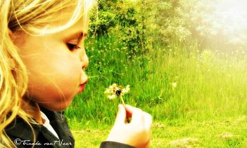 girl blowing a dandelion1